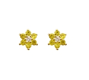 14k Gold Plated Screw back Earrings with Silver post ON SALE